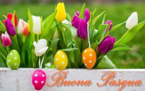Menù di Pasqua con pesce - CopyBlogger