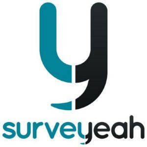 Panel sondaggi retribuiti: Surveyeah - CopyBlogger