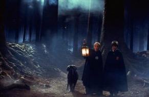 Hagrid ed il fratello di Hagrid